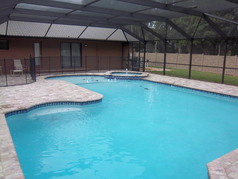 New swimming pools tropical pools and pavers for Pool vendors