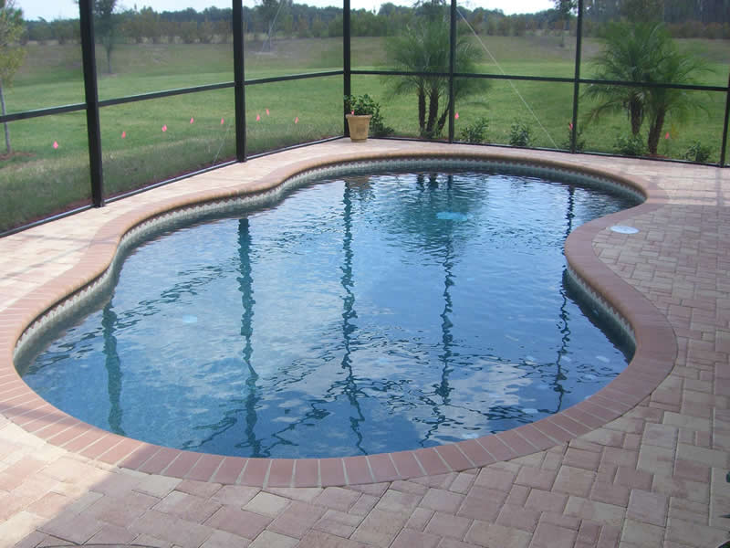 Swimming Pool Pavers : New swimming pools tropical and pavers